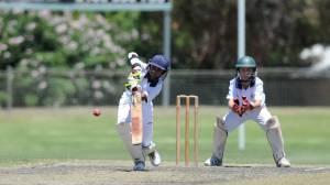 Schoolboy cricket